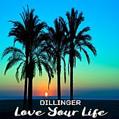Love Your Life by Dillinger