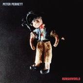 Heavenly Day von Peter Perrett