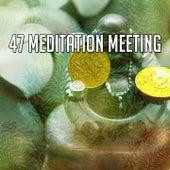 47 Meditation Meeting von Massage Therapy Music