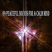69 Peaceful Sounds for a Calm Mind von Massage Therapy Music