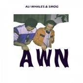 Alles Wird Nichts by Ali Whales