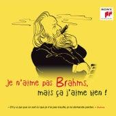 Je n'aime pas Brahms, mais ça j'aime bien ! by Various Artists