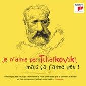 Je n'aime pas Tchaikovski, mais ça j'aime bien ! de Various Artists