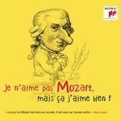 Je n'aime pas Mozart, mais ça j'aime bien ! de Various Artists