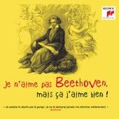 Je n'aime pas Beethoven, mais ça j'aime bien ! by Various Artists