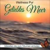 Geliebtes Meer, Melodien die zum Träumen einladen by Wellness Pur