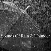 Sounds of Rain & Thunder by Nature Sounds (1)