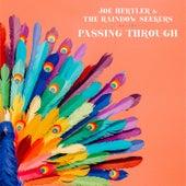 Passing Through by Joe Hertler
