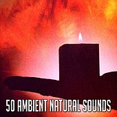 50 Ambient Natural Sounds von Lullabies for Deep Meditation