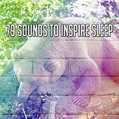 79 Sounds to Inspire Sleep de Nature Sound Series