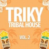 Triky Tribal House, Vol. 2 de Various Artists