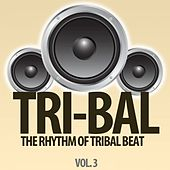 Tri-Bal, Vol. 3 (The Rhythm of Tribal Beat) de Various Artists