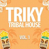 Triky Tribal House, Vol. 1 de Various Artists