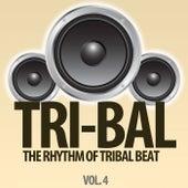 Tri-Bal, Vol. 4 (The Rhythm of Tribal Beat) de Various Artists
