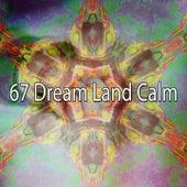 67 Dream Land Calm de Smart Baby Lullaby