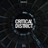 Critical District de Various