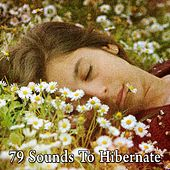 79 Sounds to Hibernate de White Noise Babies