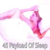45 Payload of Sleep by Baby Sleep Sleep