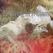 25 Living In a Storm de Thunderstorm Sleep