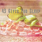 43 Gifts for Sleep de Water Sound Natural White Noise