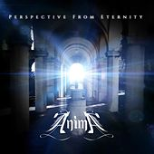 Perspective from Eternity by Anima