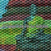 53 Tranquil Tracks for Zen Meditation von Entspannungsmusik