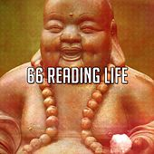 66 Reading Life by Classical Study Music (1)