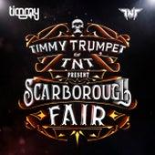 Scarborough Fair de Timmy Trumpet