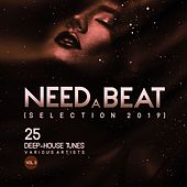 Need a Beat (Selection 2019) [25 Deep House Tunes], Vol. 3 de Various Artists