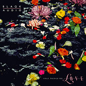 Only Things We Love by Blaqk Audio