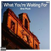 What You're Waiting For von Brac Phunk