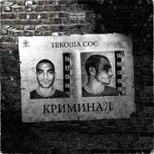 Криминал by Текоша Сос