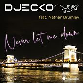 Never Let Me Down (Original Mix) di Djecko