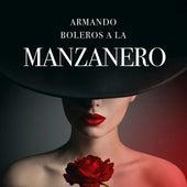 Armando Boleros a la Manzanero de Various Artists