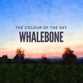 The Colour of the Sky by Whalebone