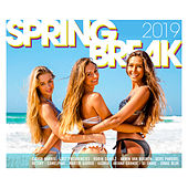 Spring Break 2019 de Various Artists