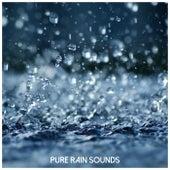 Pure Rain Sounds by Nature Sounds (1)