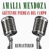 Grítenme piedras del campo de Amalia Mendoza