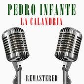 La calandria by Pedro Infante
