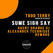 Sume Sigh Say (Agent Orange DJ & Alexander Technique Rework) by Todd Terry