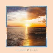Pure Sounds of Michigan von Various Artists