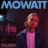 Figaro de Mowatt