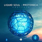 Levitate by Liquid Soul and Protonica