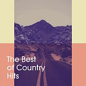 The Best of Country Hits de Various Artists