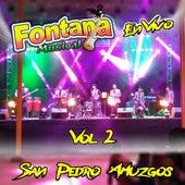San Pedro Amuzgos, Vol. 2 (En Vivo) by Fontana Musical