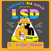 No New Friends (Remixes) by L.S.D.