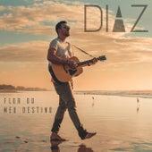 Flor do Meu Destino de Diaz