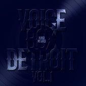 Voice Box Detroit, Vol. 1 by Niko Marks