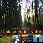 Heilung in der Natur - SyncSouls Kurzmeditationen: Wald, Wiese, Meer, Fluss, Landschaft, Sonne, Schnee von Various Artists