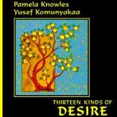 Thirteen Kinds of Desire de Pamela Knowles